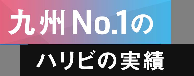 九州No.1のハリビの実績